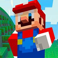 Super Mario MineCraft 3D