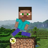 Minecraft Survival
